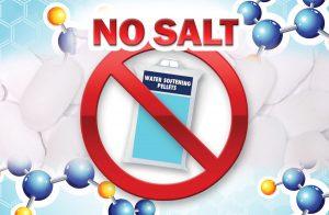 Mar_Set5_Blog3_salt
